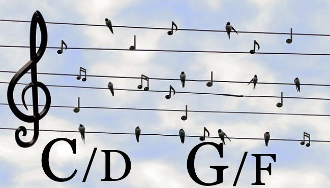 ギターコードネーム 仕組み